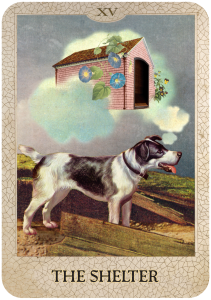 The Shelter from Dog Tarot with illustrations by Marty Blake
