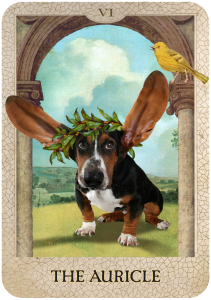 The Auricle from Dog Tarot with illustrations by Marty Blake